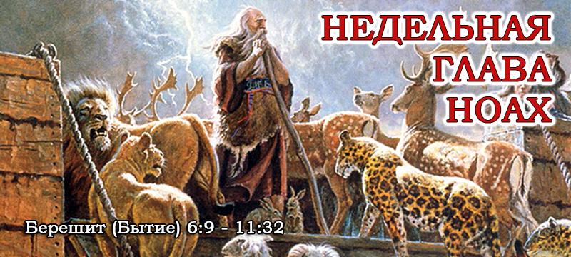 Недельная глава Ноах (Ной)