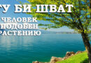 Ту би Шват - Человек подобен растению - Дерех Хаим