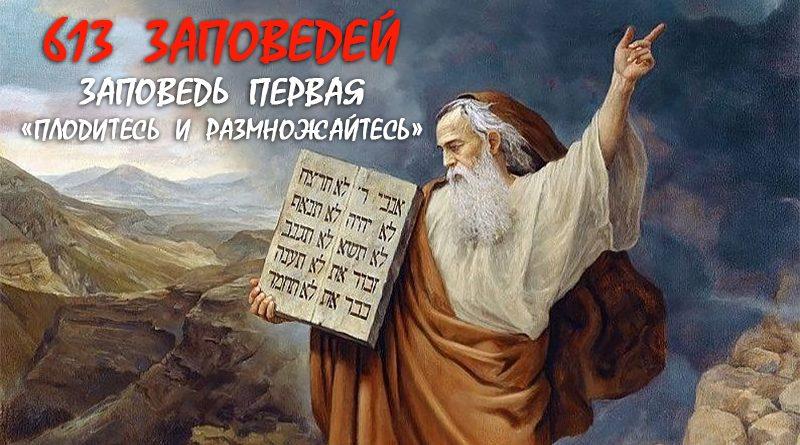 613 заповедей. Заповедь - 1 Плодитесь и размножайтесь - Дерех Хаим